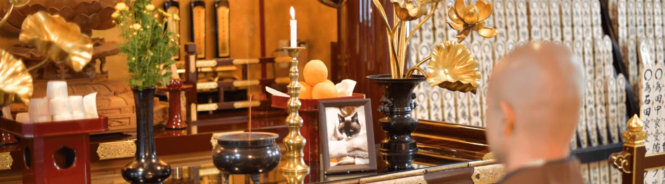 慈恵院 ペットのご供養