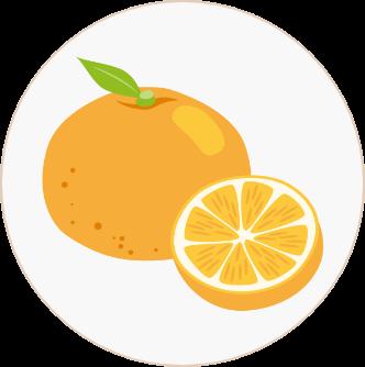 納棺できるもの-2:みかん程度の大きさの果物、野菜少々